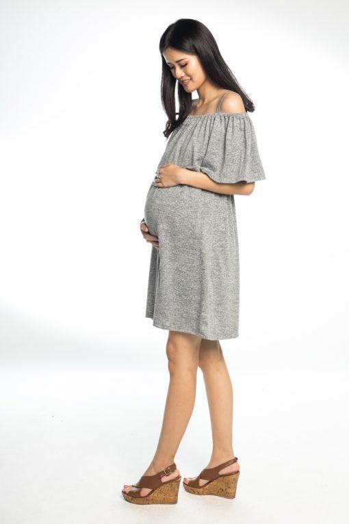 AnneeMatthew Camilla Off Shoulders Nursing Dress - Gray